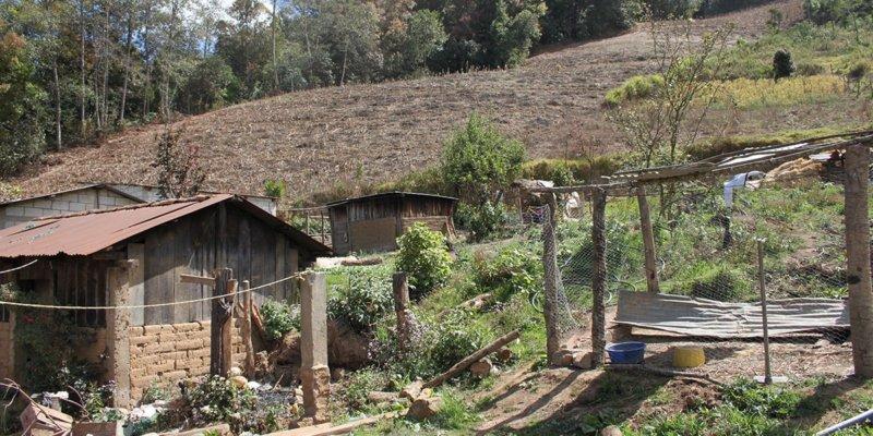 Land rights Bolivia