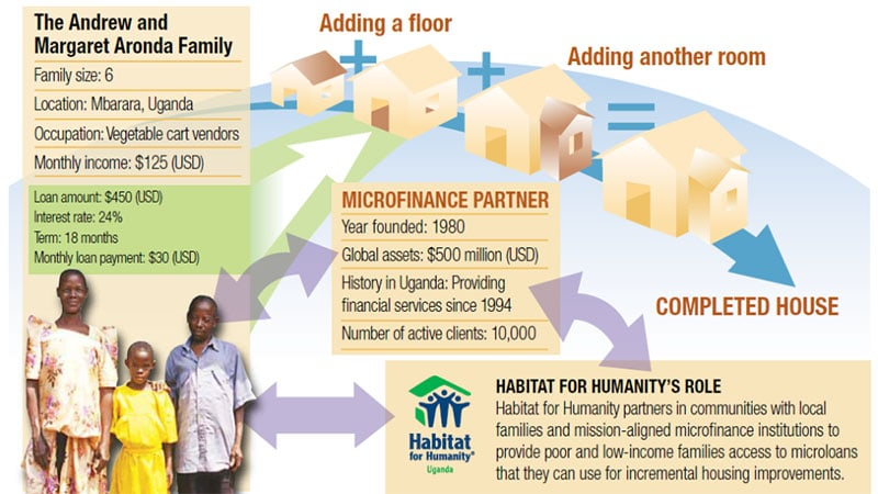 how microfinance works graphic