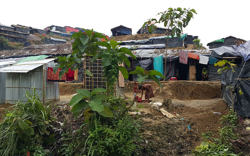 Informal settlements in Rohingya
